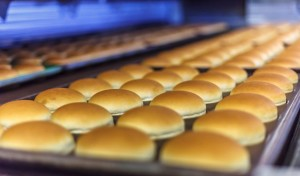 Industries served |Food manufacturing | air equipment