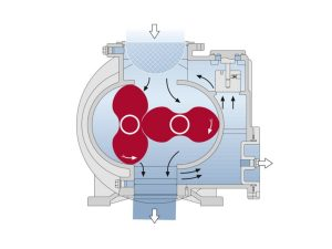 rotary lobe pump | vacuum pumps | Air Equipment
